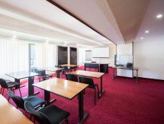 Sala Conferinta A3